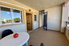 Apartamento en Orihuela - Baobab LT