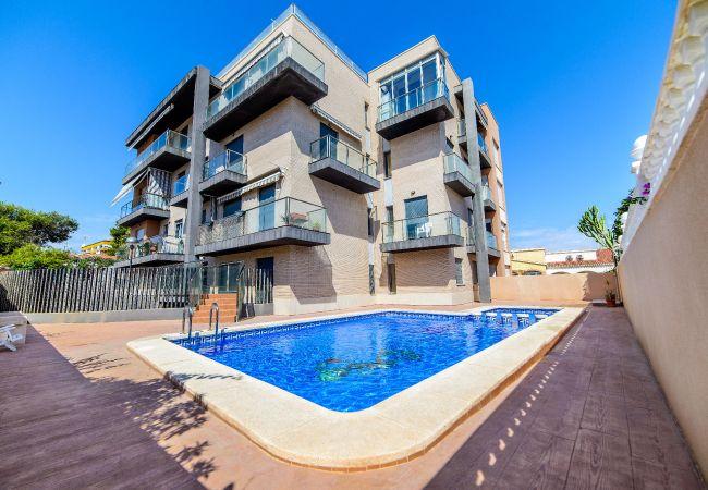 Apartamento en Torrevieja - Dama