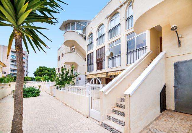 Apartamento en La Zenia - Gilda
