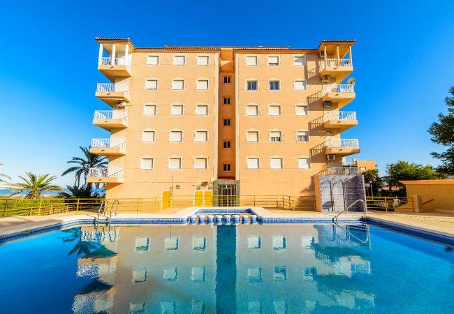 Apartamento en Torrevieja - Altamar